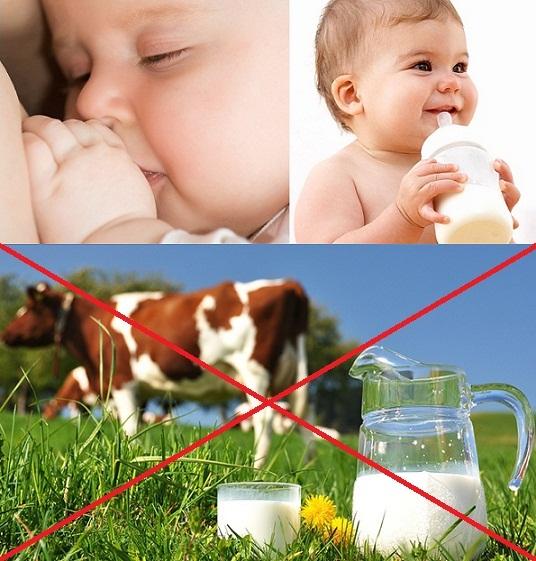 De ce NU este recomandat laptele de vaca baubil pentru bebelusii sub 1 an - minim