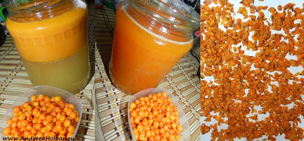 sirop de catina cu miere de albine (dupa 12 luni)