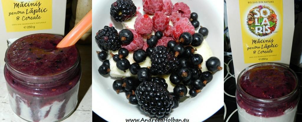 Budinca din macinis pentru laptic cu 8 cereale si cu piure de zmeura, mure, coacaze negre si banana (dupa 12 luni)
