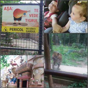 Holbanei la zoo baneasa