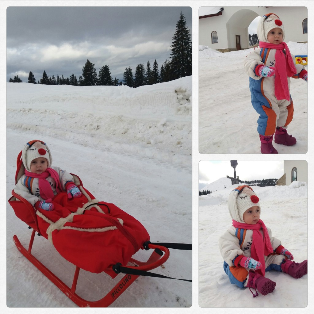 Saniuta pas prislop iarna munte maramures holbanei